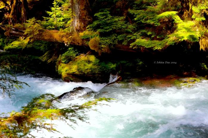 Sahalie waterfalls-Watermarked