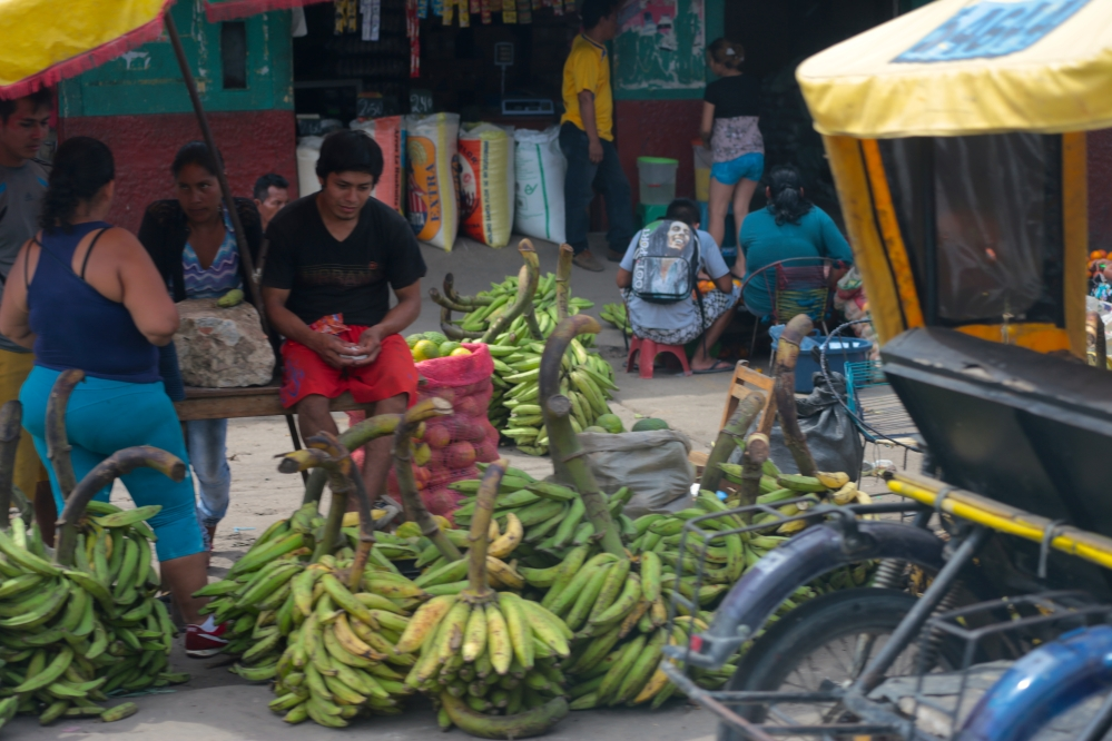 Open market: bananas, are only one type of food