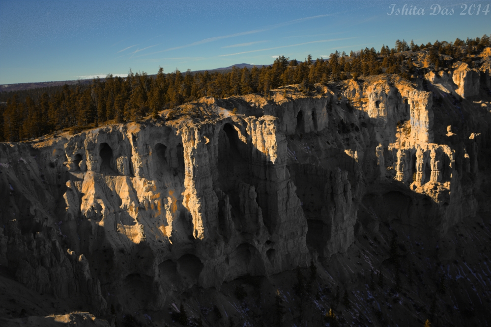 These hoodoos call at night