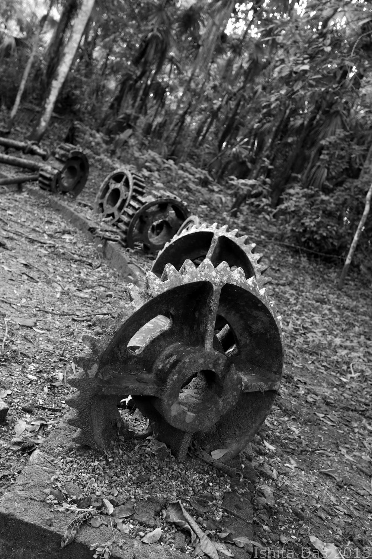 broken gears in the back-wm